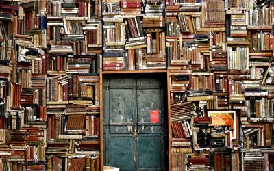 Why you should think about Knowledge Management